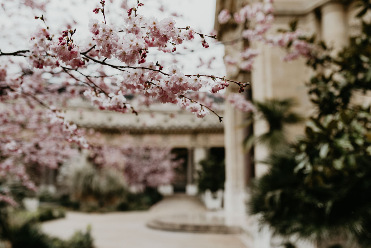 Jardin du Petit Palais au printemps